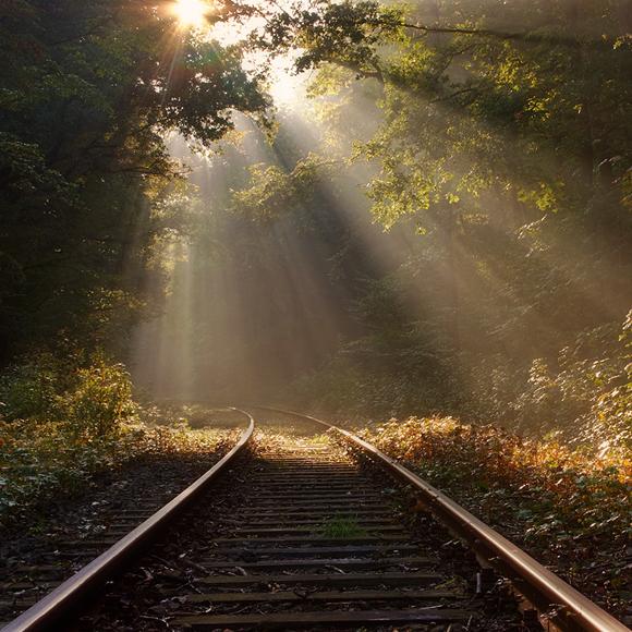 Best Natural Light Photography