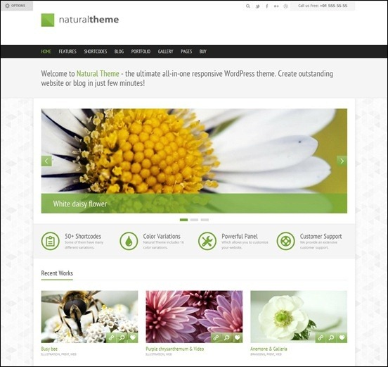 natural-responsive-theme