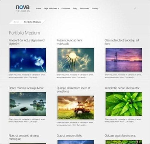 nova-gallery-theme