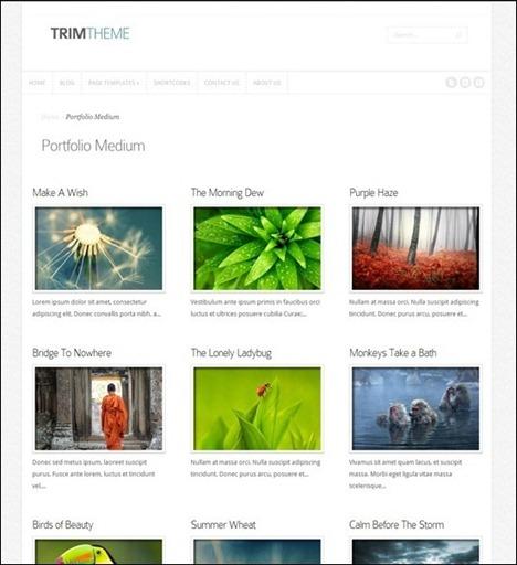 trim-gallery-theme