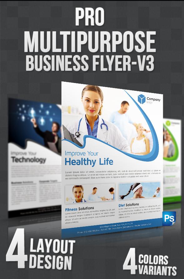 Pro Multipurpose Flyer-V3