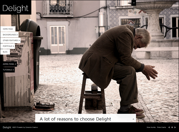 Delight Full Screen WordPress Portfolio Theme