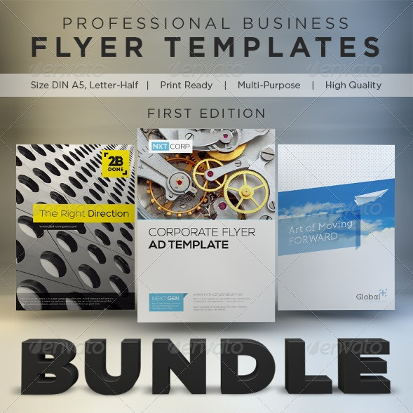 business flyer template bundle