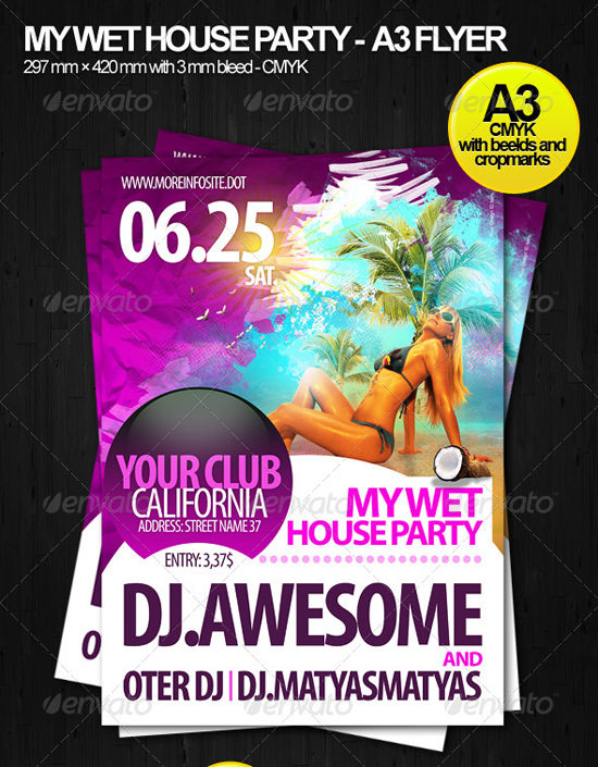 Wet House A3 Party Flyer Template