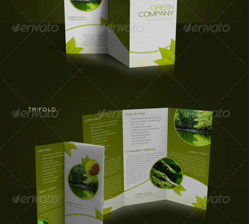 Creative Premium Brochure Template Designs Pixelscom - Indesign trifold brochure template